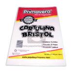 Cartulina  Bristol  primavera 10 unidades Octavo Surtido