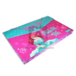 fuelle carpeta  Princesas Disney Dream Big  Primavera Plástica Niña  Oficio