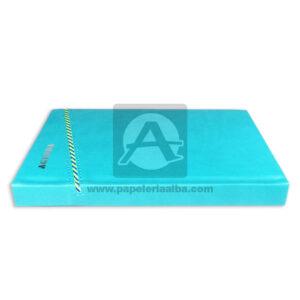 personal agenda Sencilla Metacolor azul aguamarina femenino Cosida Rayada Mediana