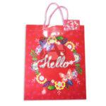 Bolsa de Regalo  Estampada de Flores, Hello de cordón Sujetador  Primavera Rojo Grande L femenino