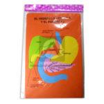 rompecabeza figura  Partes del cuerpo en Foamy,  El hígado, la vesícula y el Páncreas  Cuantias Surtido +6 Años Grande